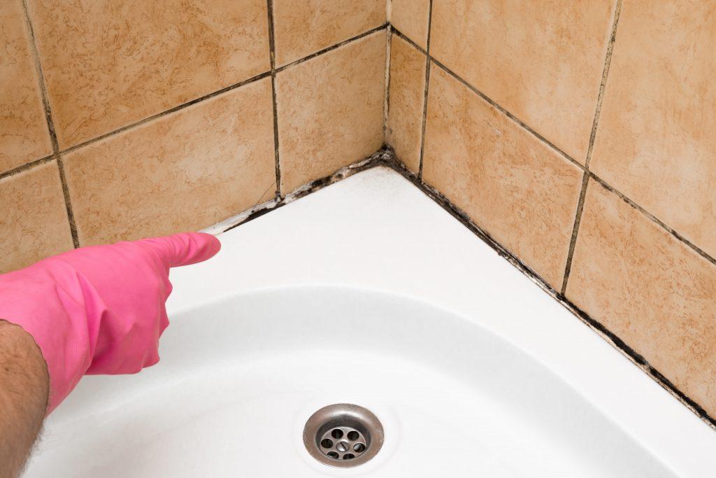 kaip panaikinti pelėsį vonioje